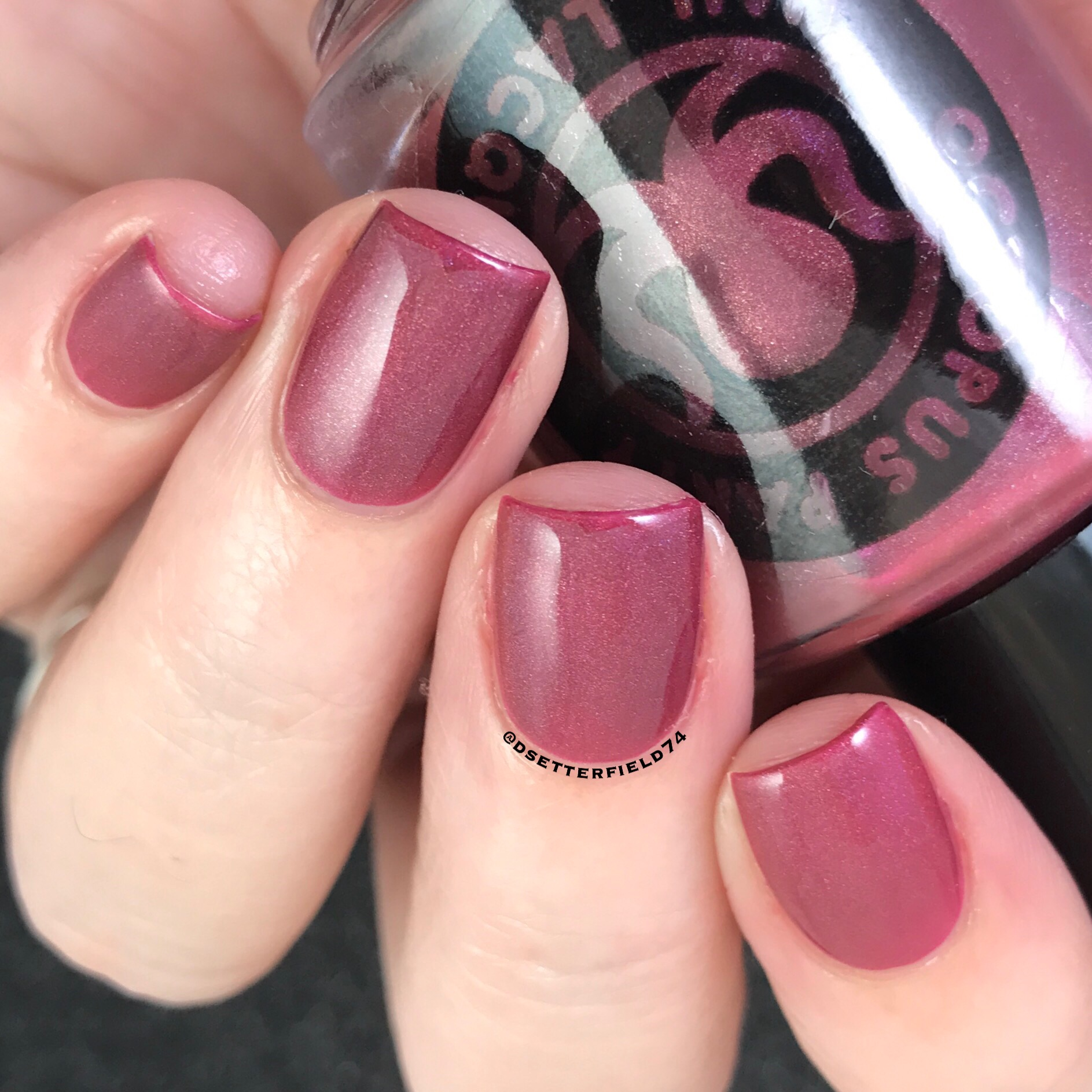 Octopus Party Nail Lacquer: Winter Collection and Holiday Duo ...